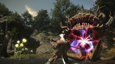 FINAL FANTASY XIV: A Realm Reborn - Beta Phase 3 für PC und PlayStation3 geht in die nächste Runde