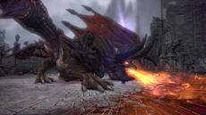 TERA: Update präsentiert den Angriff der Drachen